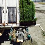 Testing Planting